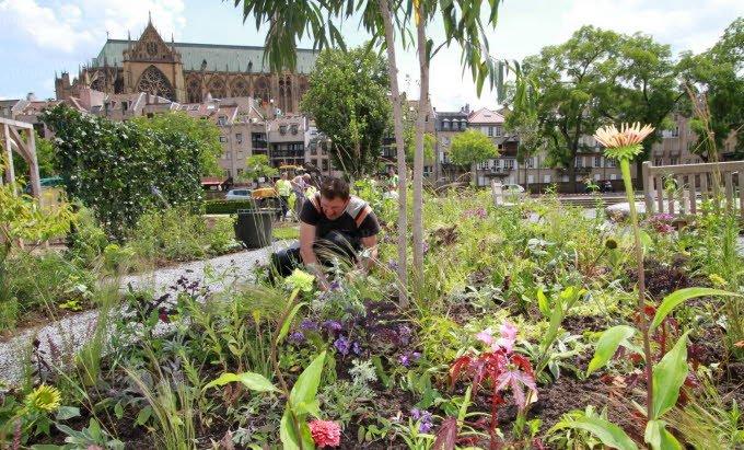 Le Jardin Ephémère de Metz
